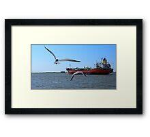 The Birds at Galveston Framed Print