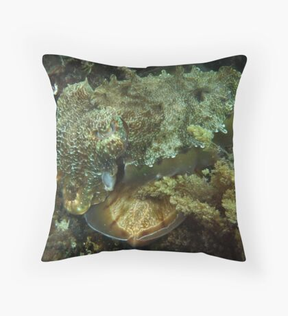 A Giant Australian Cuttlefish couple - Black Point, Whyalla Throw Pillow