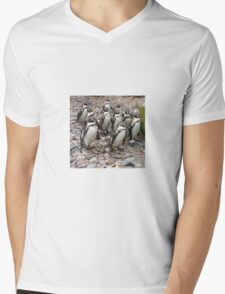 Humboldt Penguin Party Mens V-Neck T-Shirt