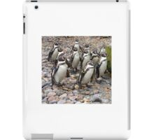 Humboldt Penguin Party iPad Case/Skin