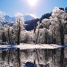 Reflections of Winter, Austria by Sabine Zehetner