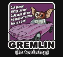 Gremlins don't follow ALL the rules One Piece - Short Sleeve