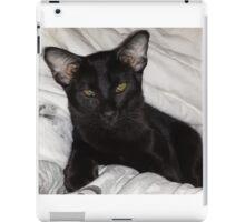 Loki Oriental Cat iPad Case/Skin