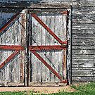 old shed by Lynne Prestebak
