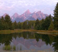 Grand Teton at Schwabacher's Landing by A.M. Ruttle