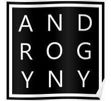 ANDROGYNY. Poster