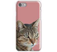 Stunning Tabby Cat Close Up Portrait Vector Isolated iPhone Case/Skin