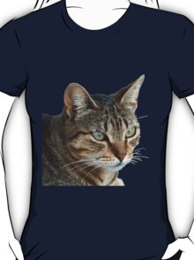 Stunning Tabby Cat Close Up Portrait Vector Isolated T-Shirt