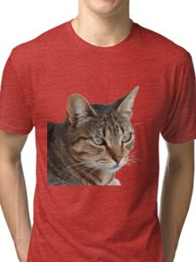 Stunning Tabby Cat Close Up Portrait Vector Isolated Tri-blend T-Shirt