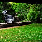 Ithaca's Treman Falls by PJS15204