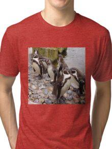 Humboldt Penguin Peeking Tri-blend T-Shirt