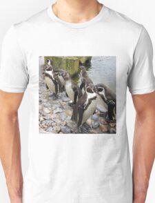 Humboldt Penguin Peeking T-Shirt