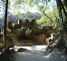 welcome to paradise 44..castelo dos mouros sintra portugal.. by Almeida Coval
