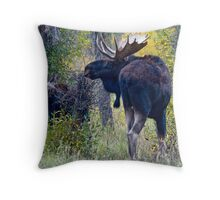 Moose Bull & Calf, Fall Colors Throw Pillow