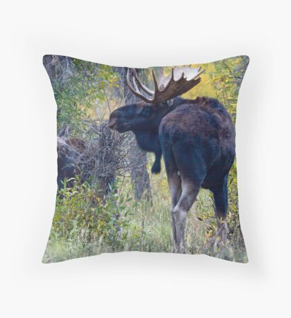 Moose Bull & Calf, Fall Colors Throw Pillow