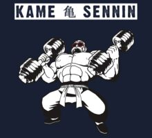 Master Roshi the Turtle Hermit (Kame Sennin) by Insider