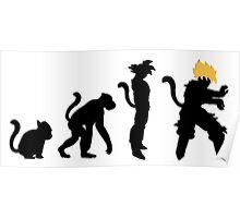 Saiyan Evolution Dragon Ball Z Poster