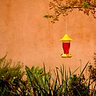 The Hummingbird Feeder by Buckwhite