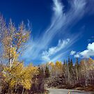 Mares' Tails by A.M. Ruttle