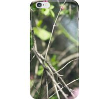 Tangled Forest iPhone Case/Skin