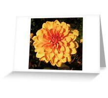 Tangerine Glow Greeting Card