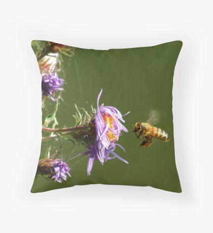 091409-122 Throw Pillow