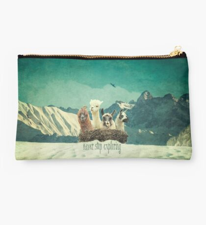 Never Stop Exploring The Snow Studio Pouch