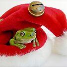 Santa's Little Helper by JulieM