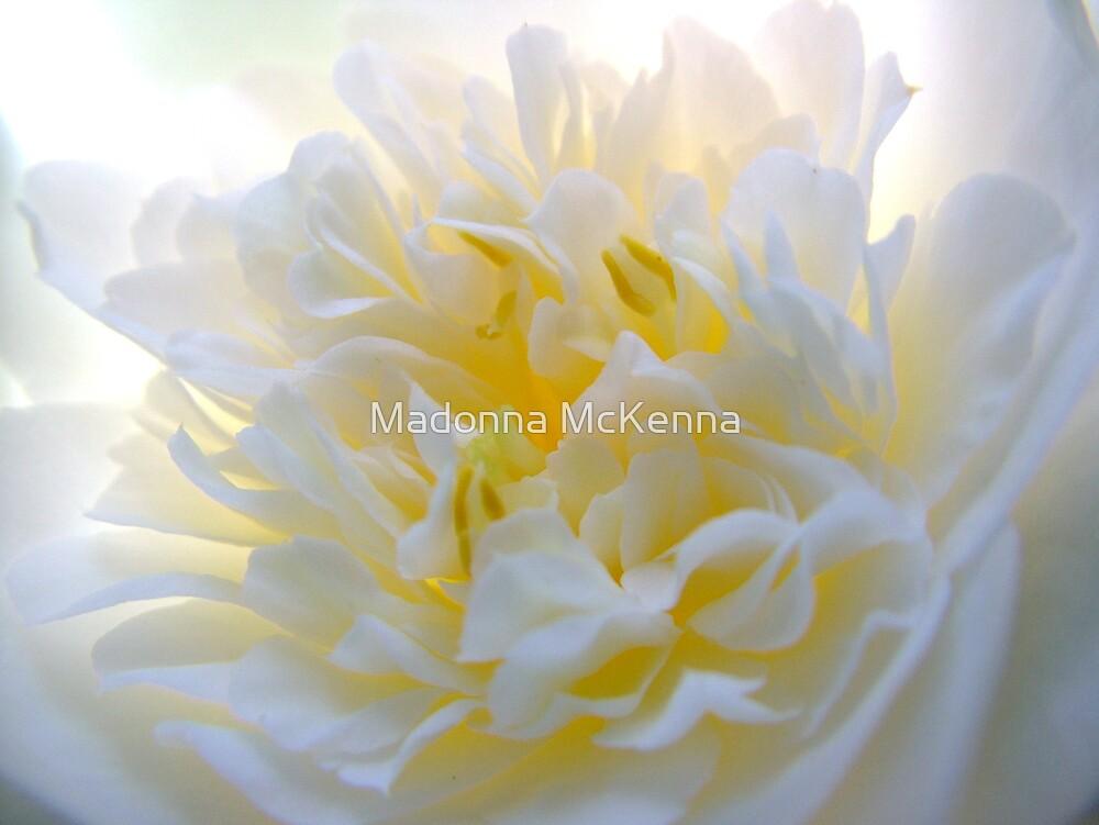 'Spring Ballet Series - Camellia Tutu' by Madonna McKenna