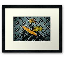 Untitled.00233 Framed Print