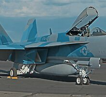 US Navy F-18E of VFA-122 Flying Eagles by Paul J. Owen