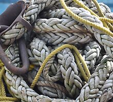 Rope and Anchor by joan warburton