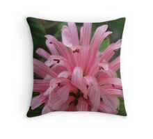 Pink Pyrotechnics Throw Pillow