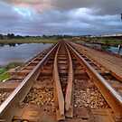 Wairoa river trainbridge 1 by Paul Mercer