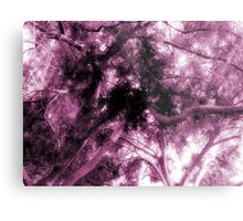Study in Light and Dark – A Canopy of Branches in Pink  Metal Print