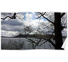 Lake District Branches Poster
