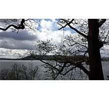Lake District Branches Photographic Print