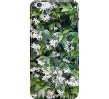 Jasmine White Flower Bush iPhone Case/Skin