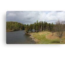 Tarn Hows Lake District Canvas Print