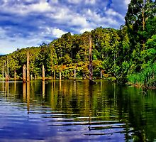 Lake Elizabeth. by Phil Thomson IPA