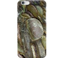 Old Coin Queens Head iPhone Case/Skin