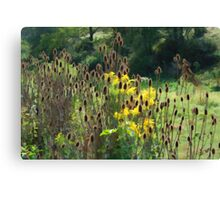 A Brush with Rushes Canvas Print