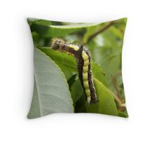 Colourful Caterpillar Throw Pillow