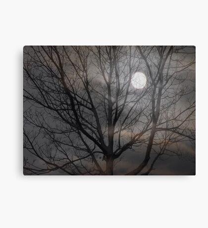 Cold Winter Nights Canvas Print