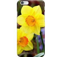 Dainty daffodils iPhone Case/Skin