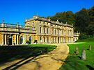 Dyrham Park House by trish725