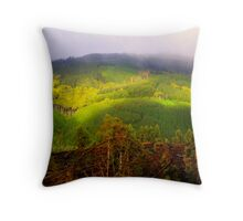 Otway National Park in hdr Throw Pillow
