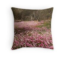 The beauty of spring - Pink Everlastings  Throw Pillow