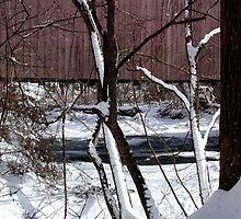 Jericho Covered Bridge Snow Scene by Hope Ledebur