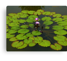 The Water Garden ~  Part Five Canvas Print